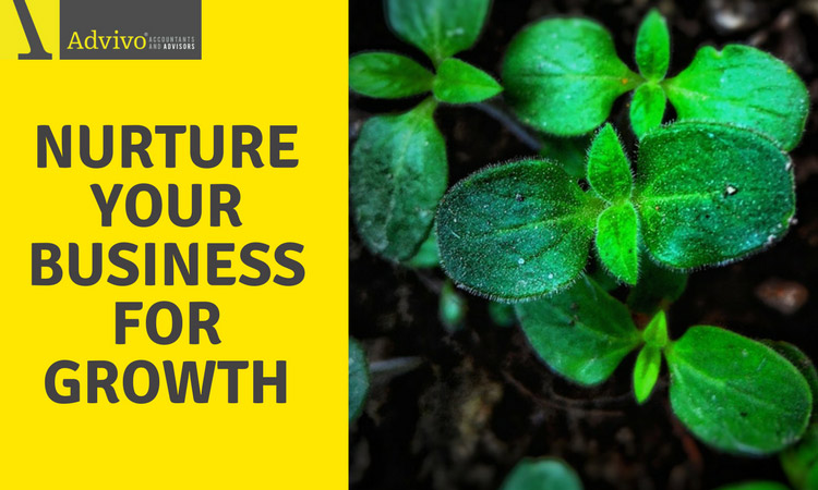 Nurture Your Business for Growth
