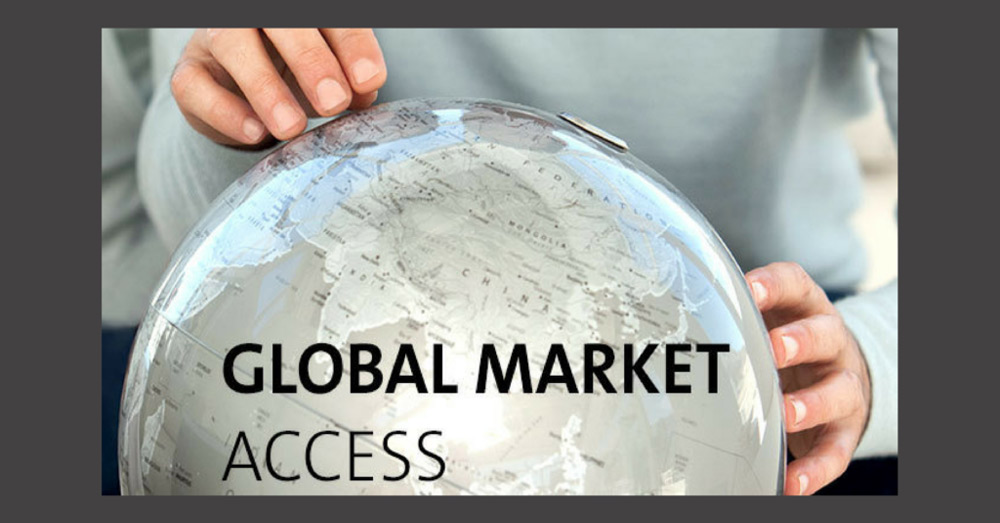 Global Thinking in the Reach of SME's – Are You Getting the Right Assistance?